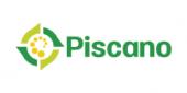 Logo Piscano